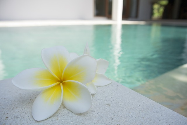 dekorace bazénu